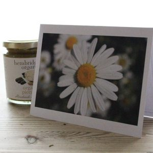 Daisy Message Card