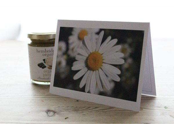 Daisy Message Card